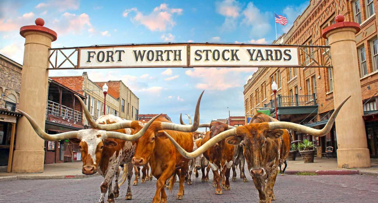 1 HERO_Herd_Stockyards_Sign_HDR_Web72DPI