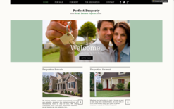 Perfect Property Website