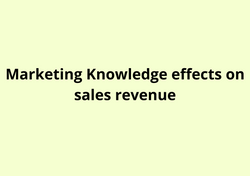 Marketing Knowledge effects on sales