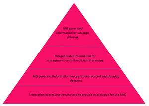 MIS (Management Information System) representation - Girlfridayz