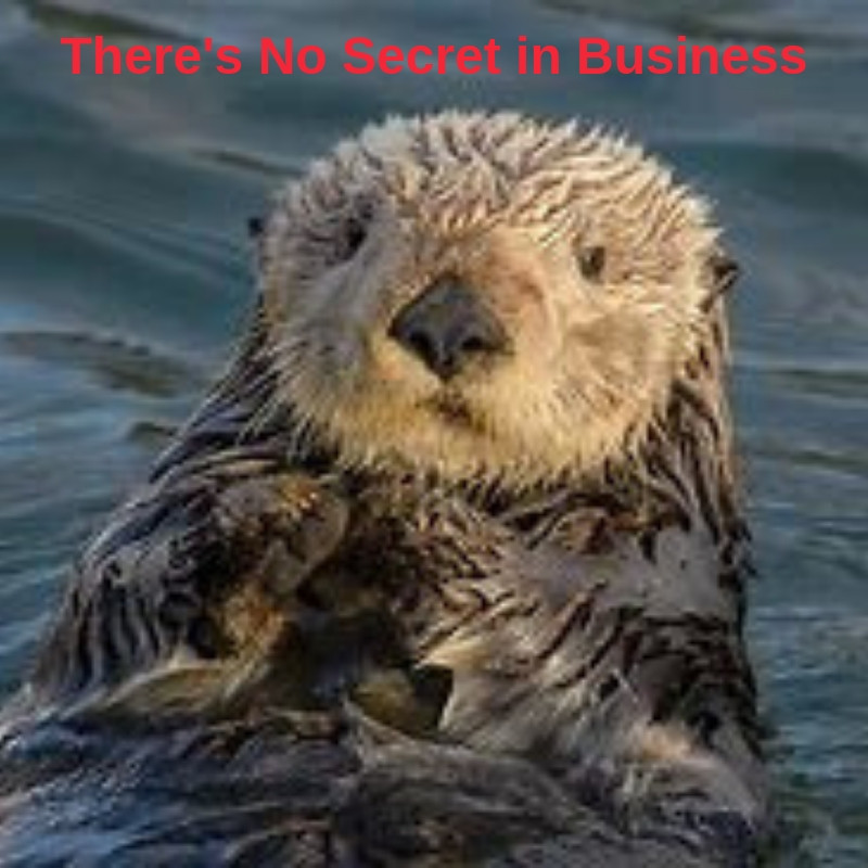Sea Weasel Otter - There's no Secret In Business