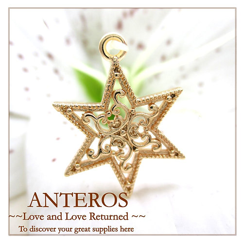 2PC Gold Ornament Six-pointed star Pendants/Charm (GFPC0029)