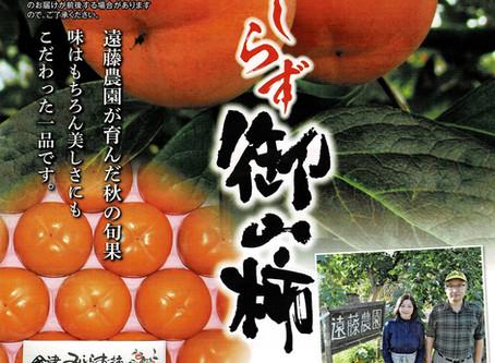 会津のみしらず柿