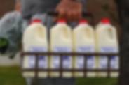 Brush Hill Dairy.webp