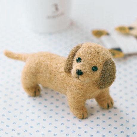 Miniature dachshund 441-264