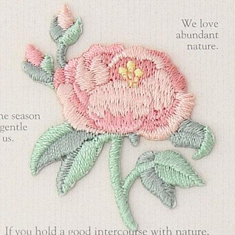 Pinky rose 457-966