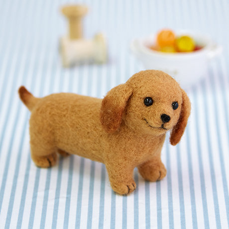 Aclaine dachshund 441-487