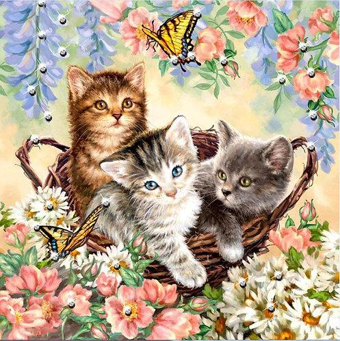 DYS051 Kitten Butterfly