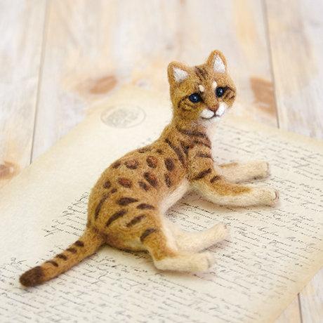 Bengal cat 441-467