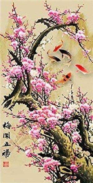 DYS059 Koi Sakura