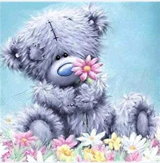DYS046 Me To You Bear