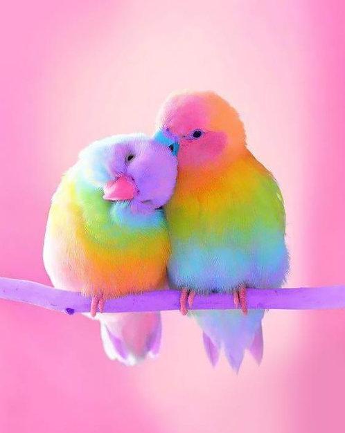 M1393 Love Bird