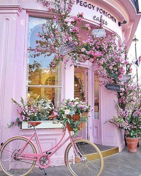 M2006 Pink Bike