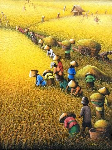 DYS095 Golden Harvest