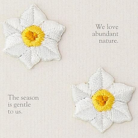 White lily 457-976