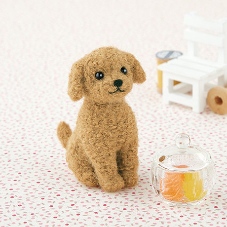 Toy poodle brown 441-421