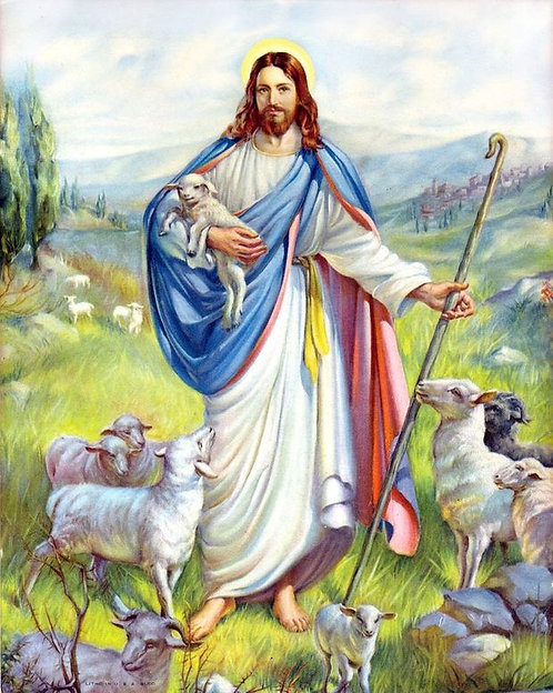 DYS031 Jesus Lambs