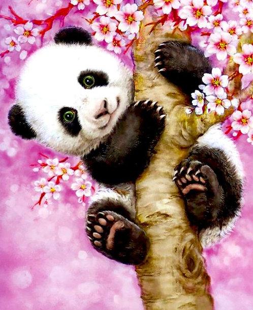 M991 Climbing Panda
