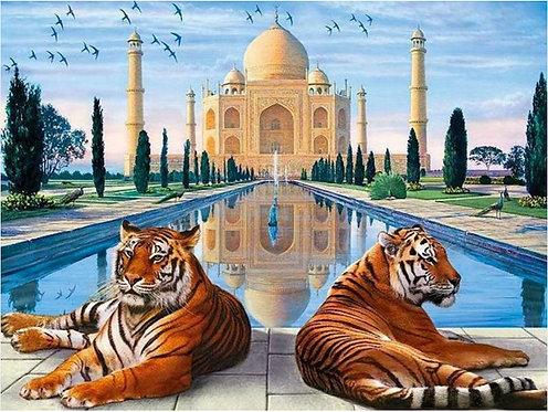 DYS045 Taj Mahal