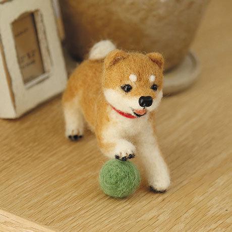 Shiba Inu with ball 441-361