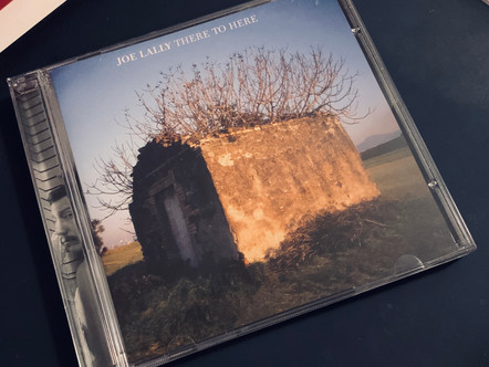 Selections from my Record Collection : Joe Lally - There to Here (2006)