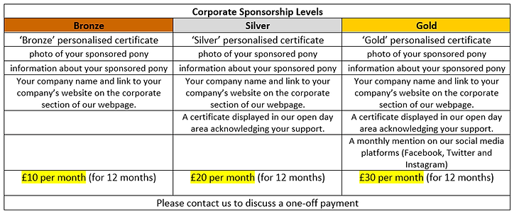 Corporate sponsorship packages.png