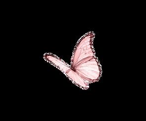 pinkbutt.png