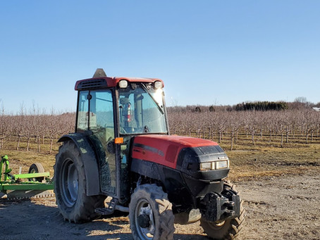 Grower Spotlight: Dave Petheram of Schuyler Farms Limited