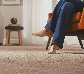 Freizie Luxurious Carpet for Any Living Space. Soft to Your Feet