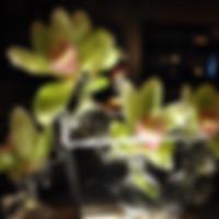 Deco Vase Centerpiece