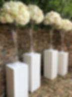 White Pedestals 3.JPG