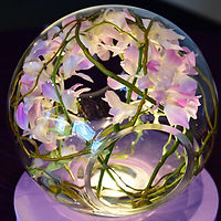 Lighted Centerpiece Crosswinds Glass with Orchids