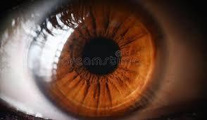 Cornea and Ocular surface Consultation