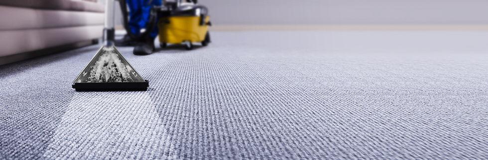 Professional Carpet Cleaning Service. Ja