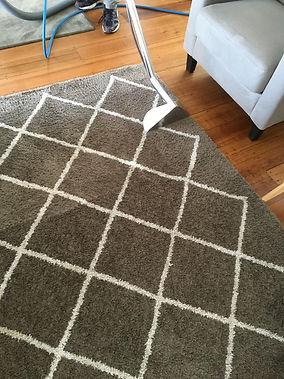 Carpet Cleaning Hobart7.jpg