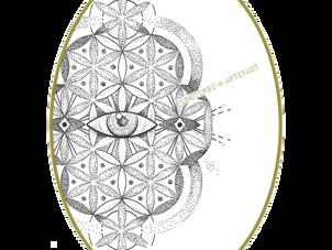 NEW FLASH |Flower Eye