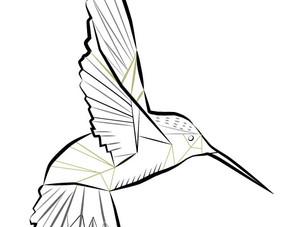 DESIGN   Symbolism   Hummingbird
