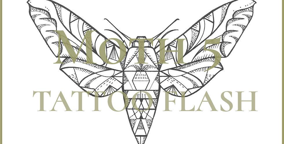 MOTH 5 | Hexagon Moth
