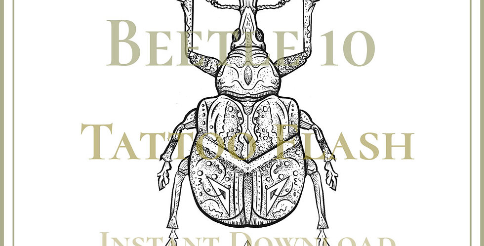 BEETLE 10A | Byctiscus Rugosus