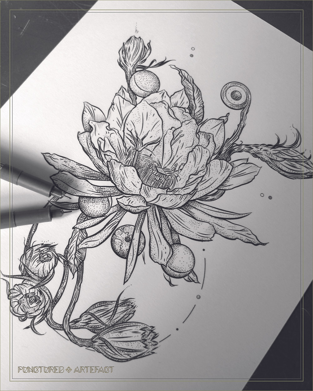 || ON THE DESK || Moon Epiphyllum || Art ||
