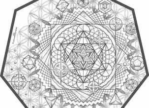 CUSTOM INK | Pleiades