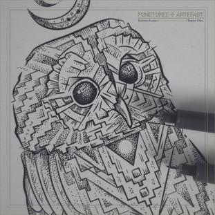 Owl 7 Flash | Tawny 3.jpg
