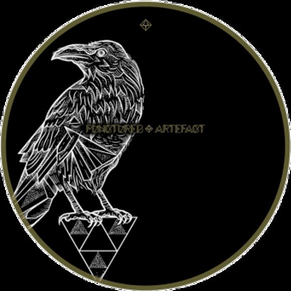 Raven2Soc-wb