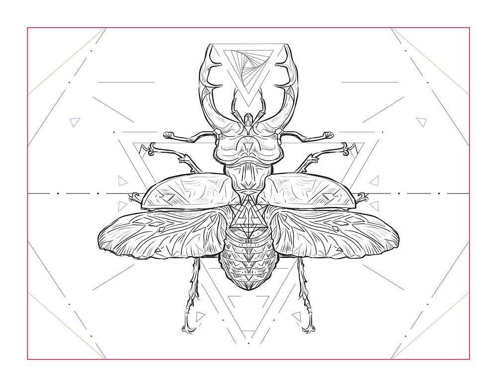 Artwork Rough | Stag Beetle