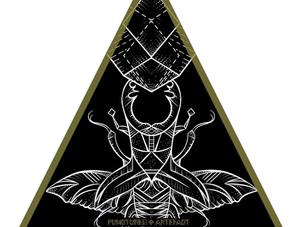 NEW FLASH | Beetle1