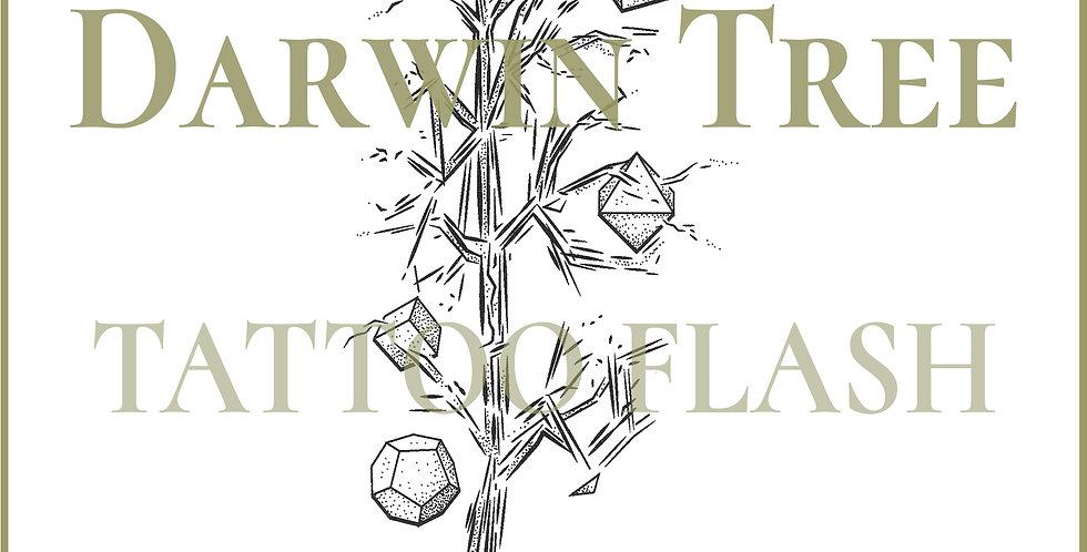 BOTANICAL 34 | Darwin Tree