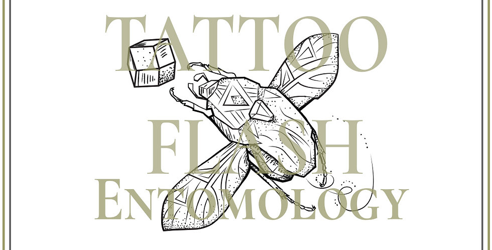 ENTOMOLOGY | 7
