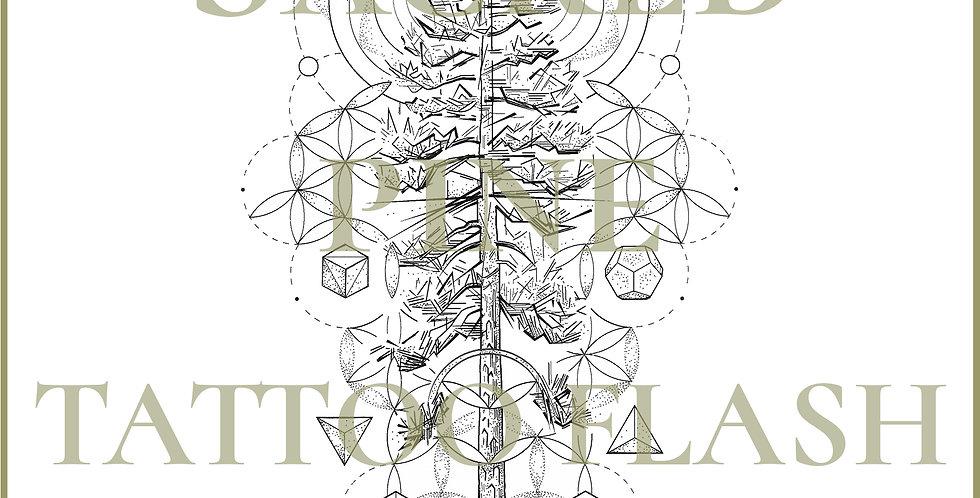 SACRED  20 | Sacred Pine