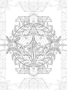 Insect Metatron   Leather Art   Vector WIP