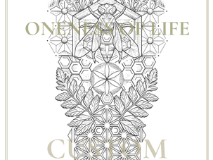CUSTOM INK | Oneness